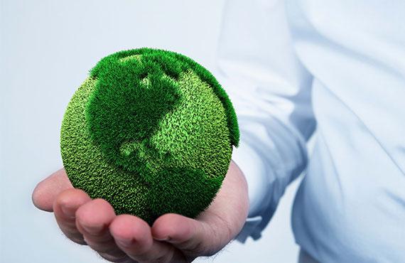 Actualité environnementale