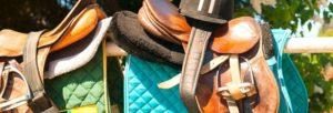 accessoires-pour-chevaux